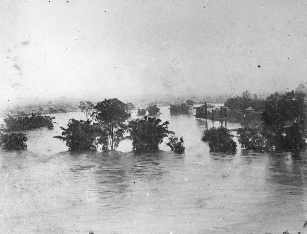 Botanic gardens Brisbane during the January 1887 floods.  'John Oxley Library, State Library of Queensland Image: 204007'
