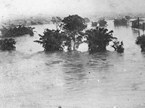 1887_flood_Brisbane_city
